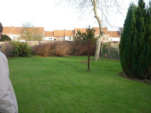 Garden part 3