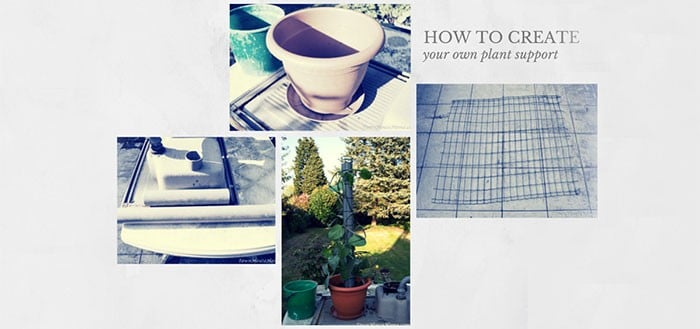 Diy plant support featured